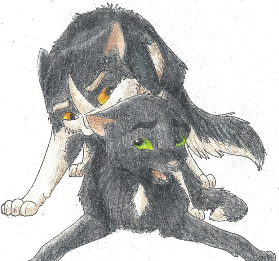 scourge pages warrior cats coloring Vampire_hunter_d
